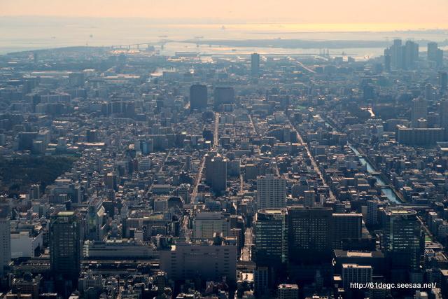 天望デッキから東京湾を望む