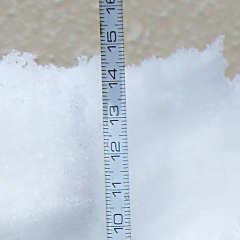 積雪深14cm