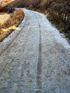 霜で真っ白な道路