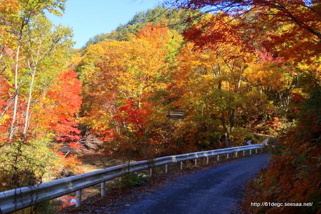 玉川渓谷の紅葉その1