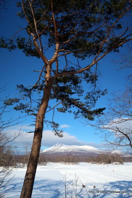 凍てつく大沼と輝く駒ヶ岳